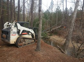 top-acworth-tree-service-company-with-bobcat